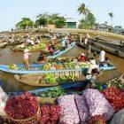 ship mua hàng trên amazon về Tiền Giang